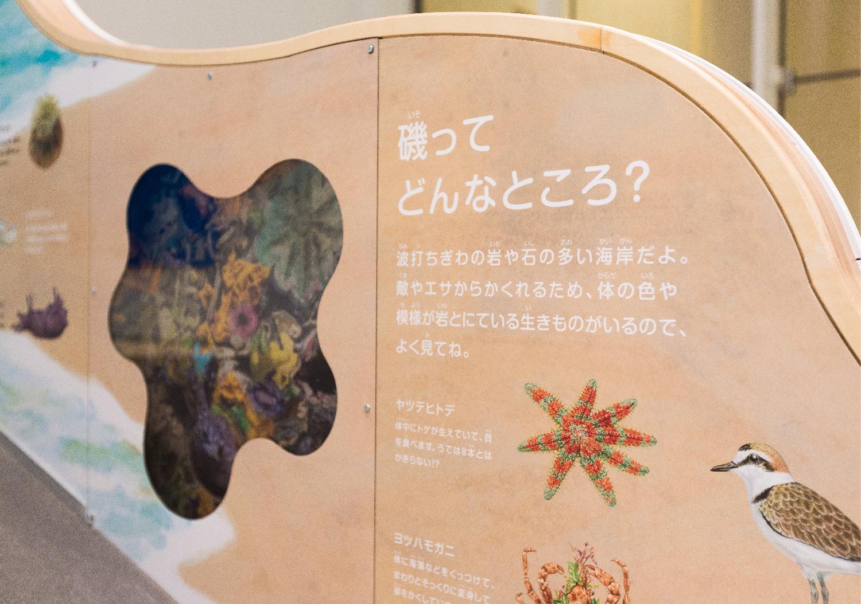 三重県総合博物館 こども展示室_10