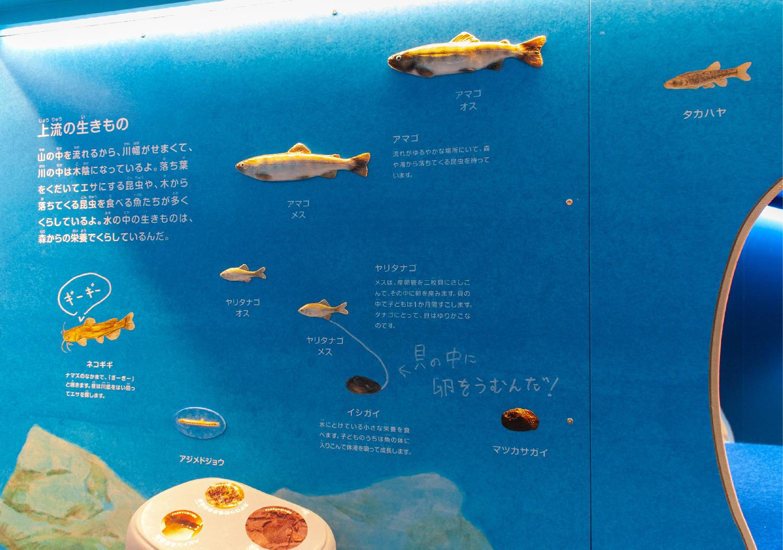 三重県総合博物館 こども展示室_18