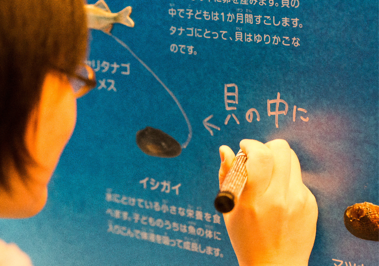 三重県総合博物館 こども展示室_19