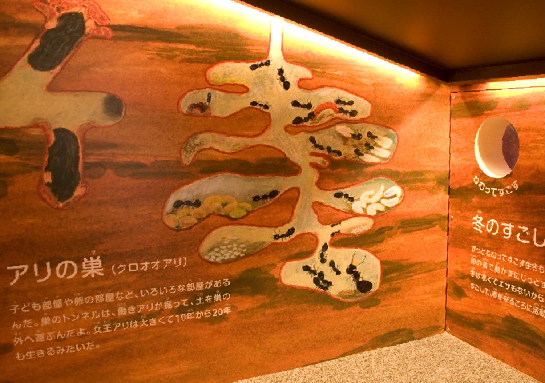 三重県総合博物館 こども展示室_25