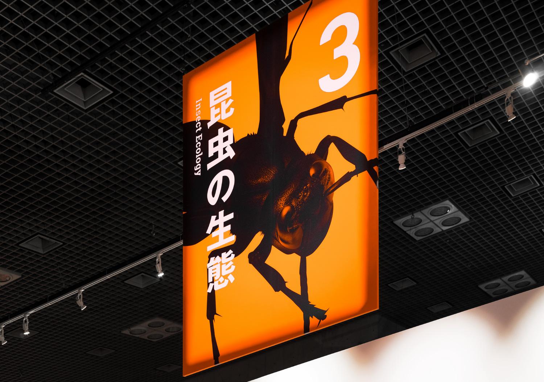 国立科学博物館 特別展「昆虫」_1