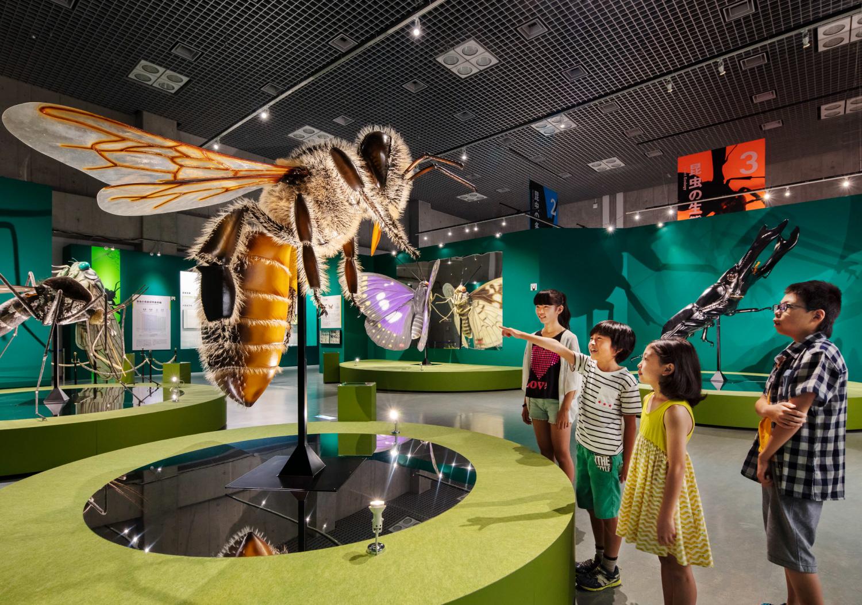 国立科学博物館 特別展「昆虫」_3