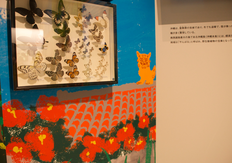 国立科学博物館 特別展「昆虫」_10