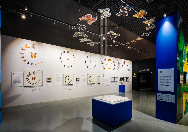 国立科学博物館 特別展「昆虫」_11