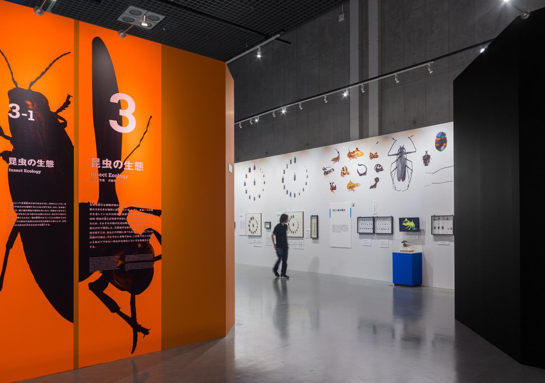 国立科学博物館 特別展「昆虫」_15