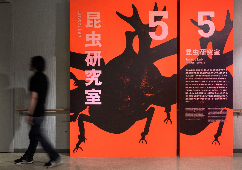 国立科学博物館 特別展「昆虫」_23