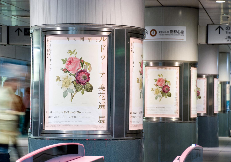花の画家 ルドゥーテ展|Bunkamura ザ・ミュージアム_3