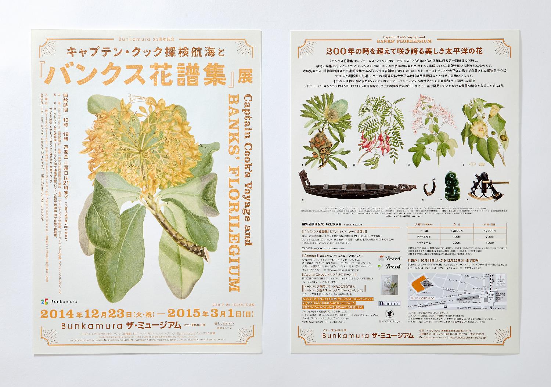 『バンクス花譜集』展|Bunkamura ザ・ミュージアム_4