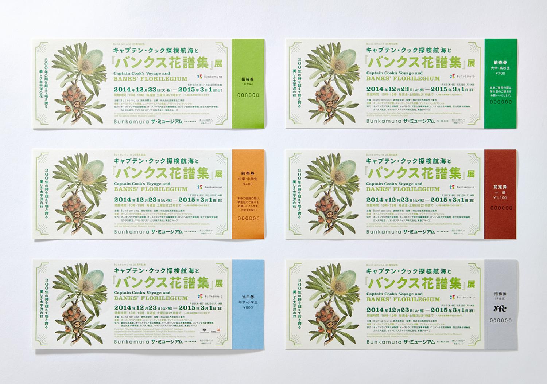 『バンクス花譜集』展|Bunkamura ザ・ミュージアム_8